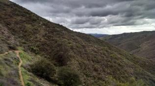 SJC Trail